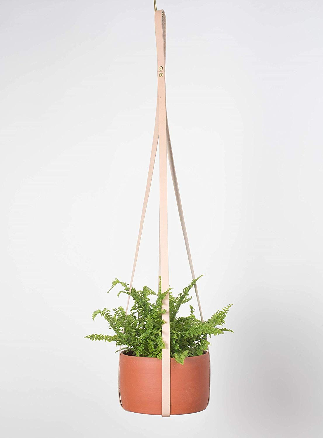Best Hanging Plants And Planters The Strategist New York Magazine