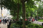 600 people were in queue before the Madison Square Park burger stand even opened.