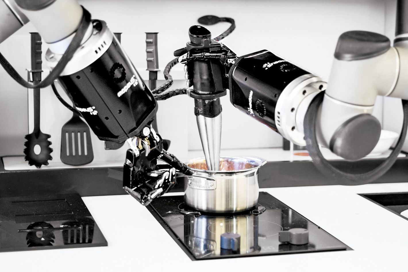 The Limits And Possibilities Of A Robot Chef