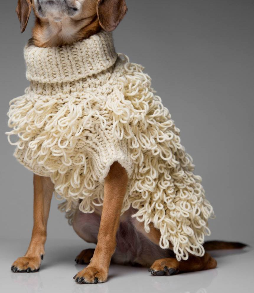 Max-Bone Curly Knit Dog Sweater