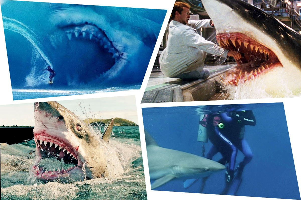 The 12 Best Shark Movies Since Jaws Ranked