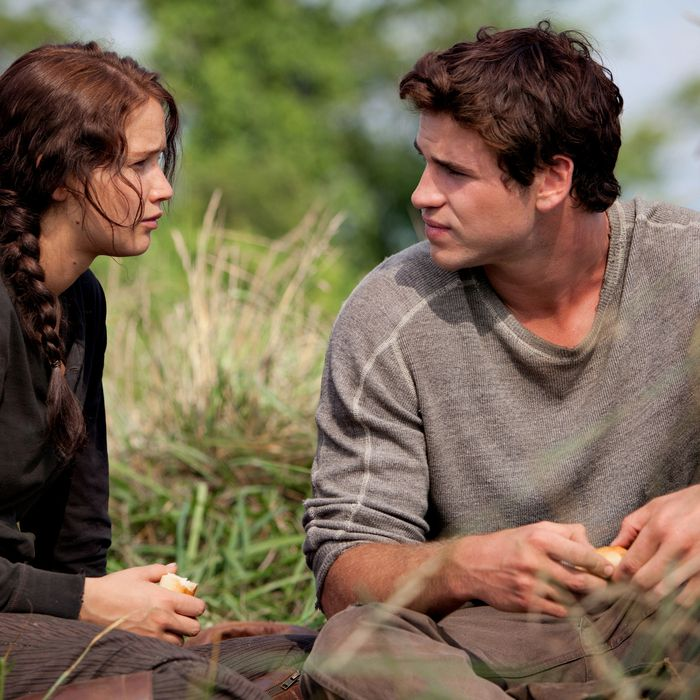 What Got Left Out Of The Hunger Games Movie And How Much It Mattered