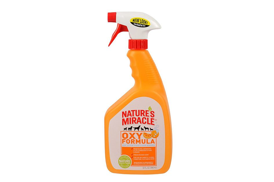 Nature's Miracle Oxy Formula Stain & Odor Remover, 24 oz.
