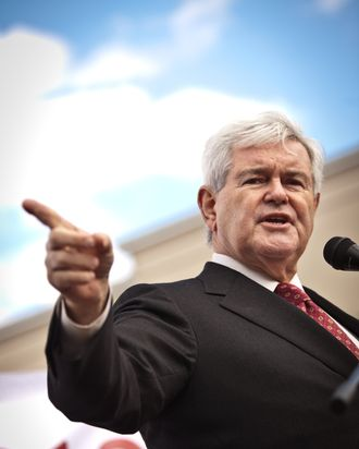BLUFFTON, SC - NOVEMBER 29: Republican presidential candidate Newt Gingrich speaks at a townhall meeting on November 29, 2011 in Bluffton, South Carolina. Gingrich spoke to supporters about illegal immigration as part of a three-day swing through South Carolina. (Photo by Richard Ellis/Getty Images)