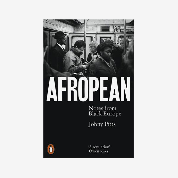 """Afropean: Notes From Black Europe,"" by Johny Pitts"
