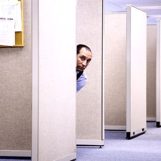 Mature man peeking through office cubicles, portrait