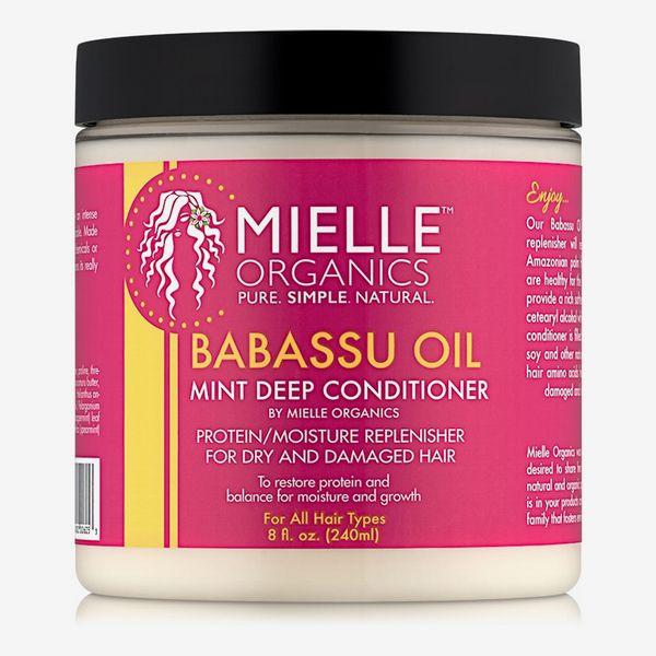 Mielle Organics Babassu Oil and Mint Deep Conditioner