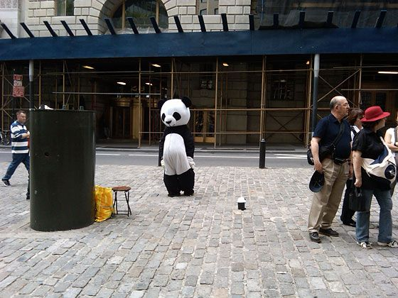 Sad Panda Shunned & Sad Panda: The Story of an Obsession -- NYMag