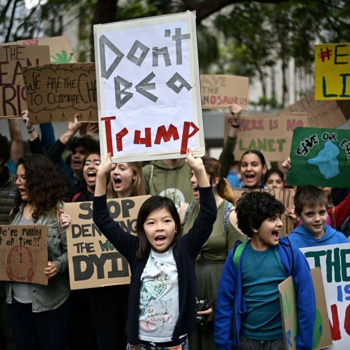 climate strike - photo #42