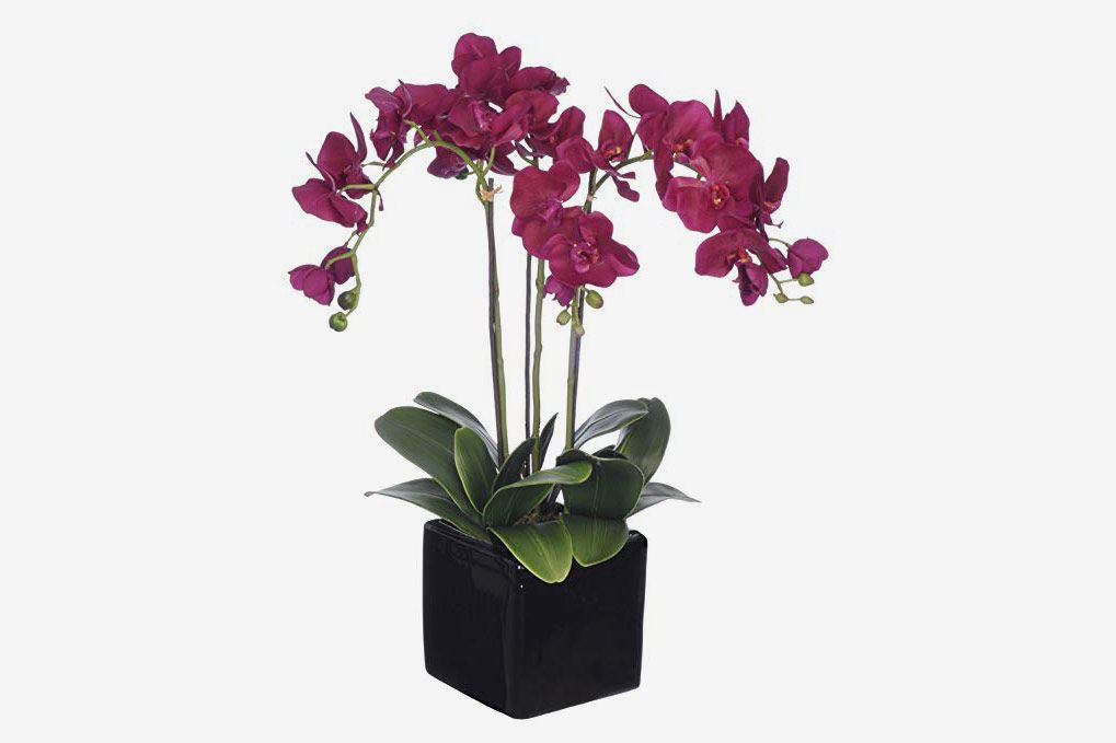 House of Silk Flowers Artificial Dark Purple Triple-Stem Phalaenopsis Orchid Arrangement