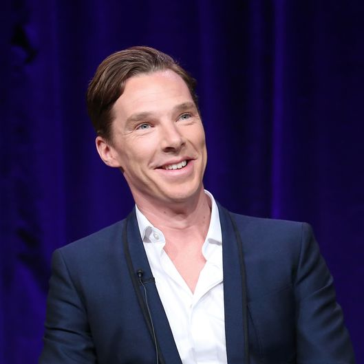 PASADENA, CA - JANUARY 20:  Actor Benedict Cumberbatch speaks onstage during the 'Masterpiece/Sherlock, Season 3' panel discussion at the PBS portion of the 2014 Winter Television Critics Association tour at Langham Hotel on January 20, 2014 in Pasadena, California.  (Photo by Frederick M. Brown/Getty Images)